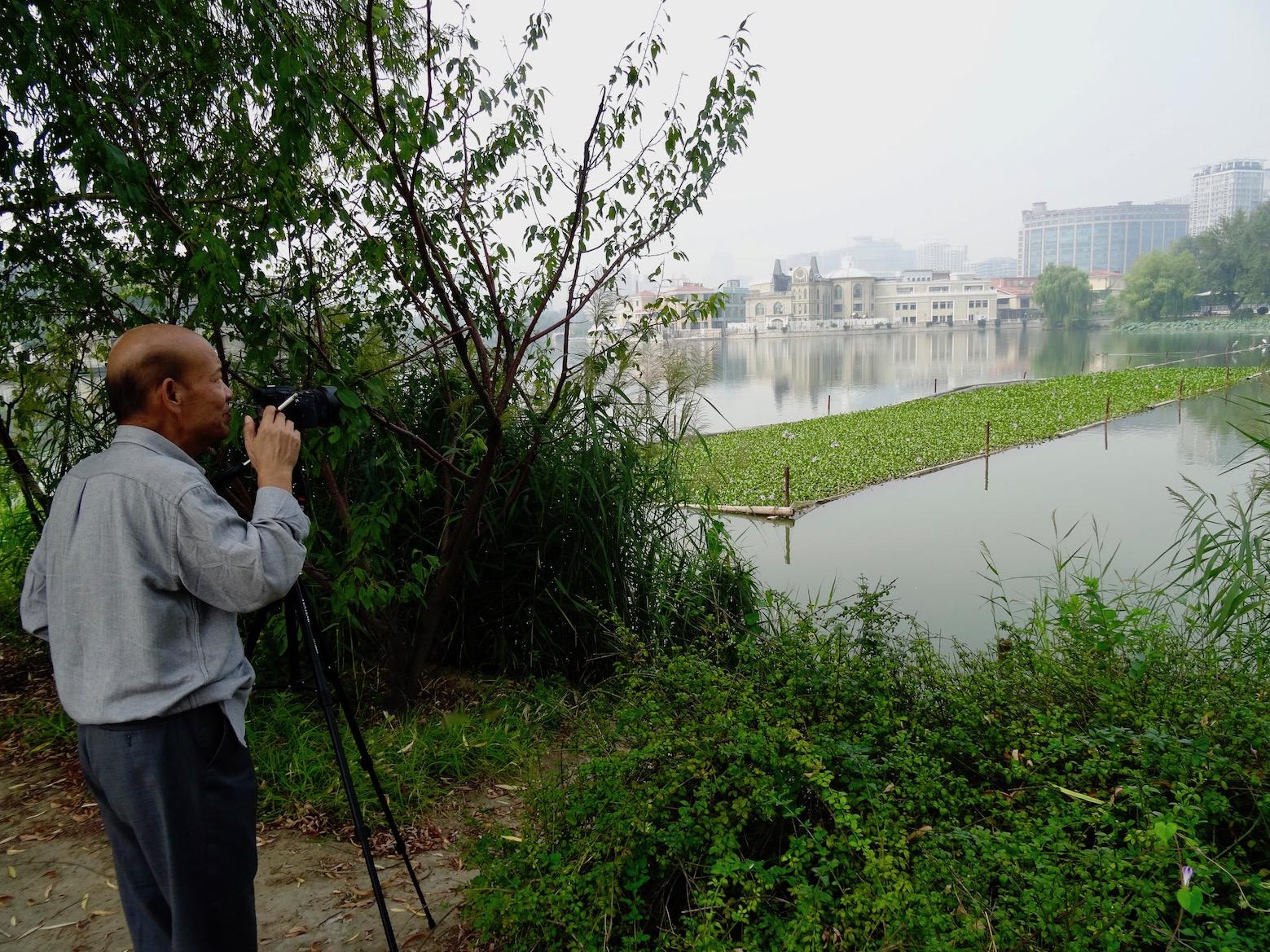 Lotus Lake Chaoyang Park Sun Park Beijing