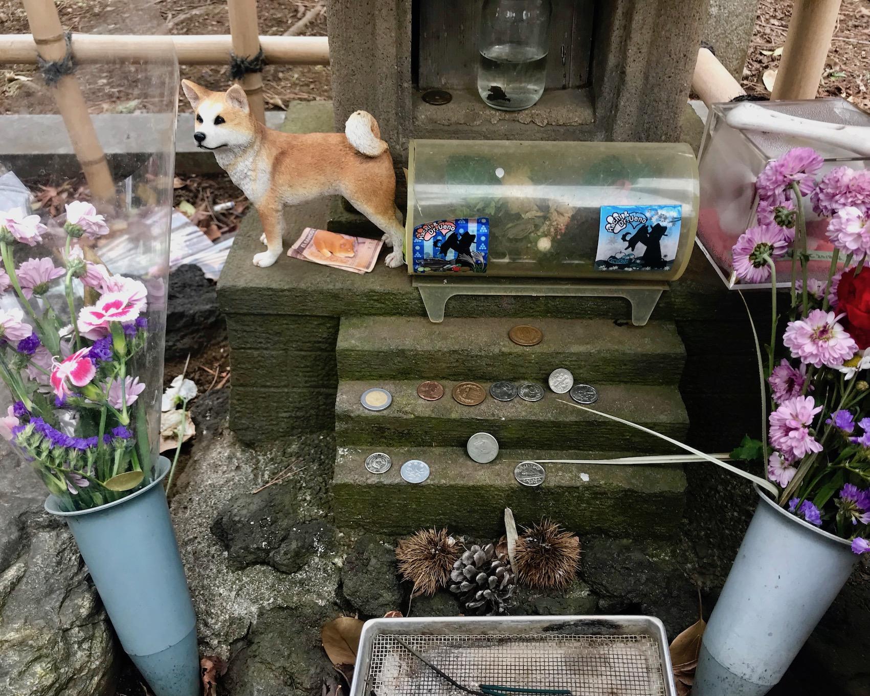 Hachiko grave Aoyama Cemetery Tokyo.