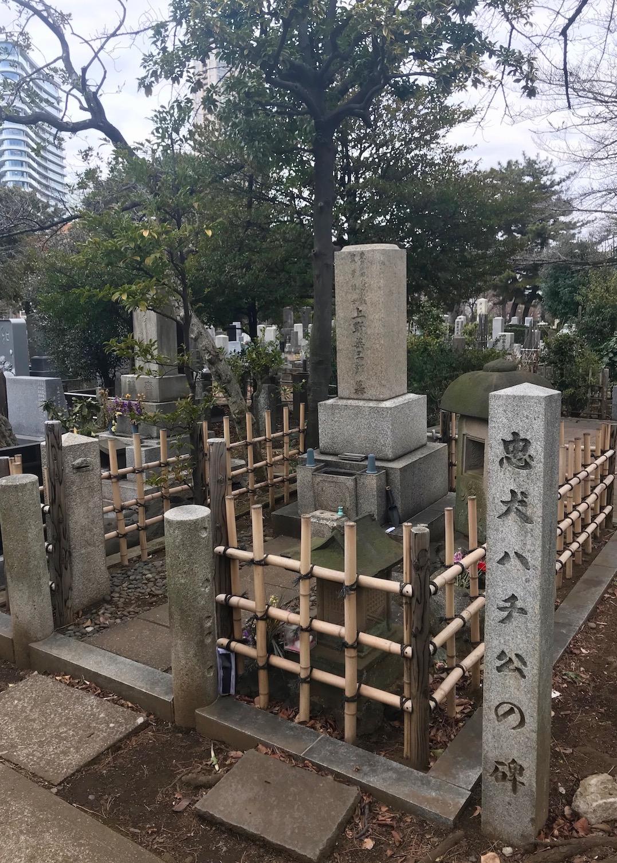 Professor Ueno and Hachiko graves Aoyama Cemetery Tokyo.
