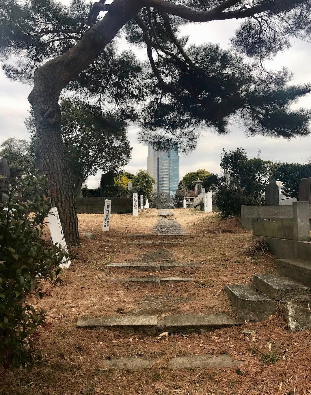 Visit Aoyama Cemetery Tokyo.
