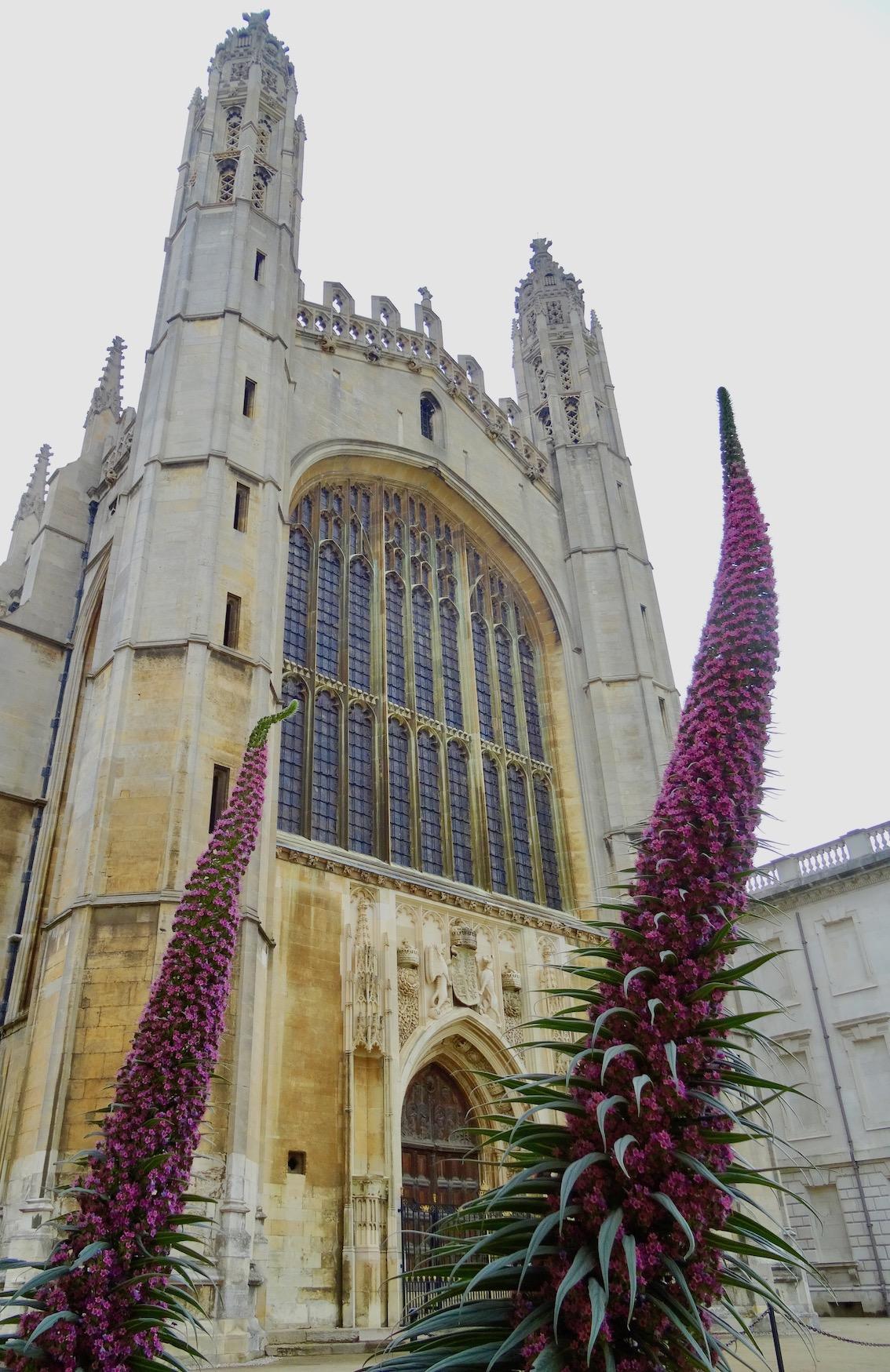 King's College Chapel Cambridge England.