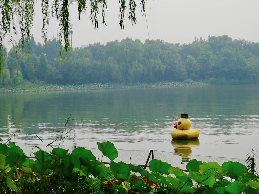 Lotus Lake Chaoyang Park Beijing.