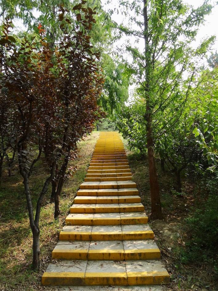 Visit pretty Chaoyang Park Beijing.
