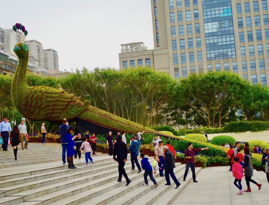Visit Shenzhen International Garden and Flower Expo Park.