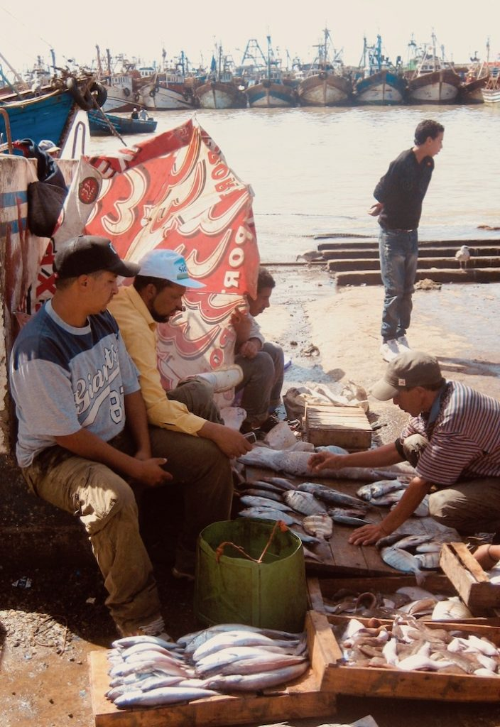 Fresh fish at Essaouira Port Morocco.