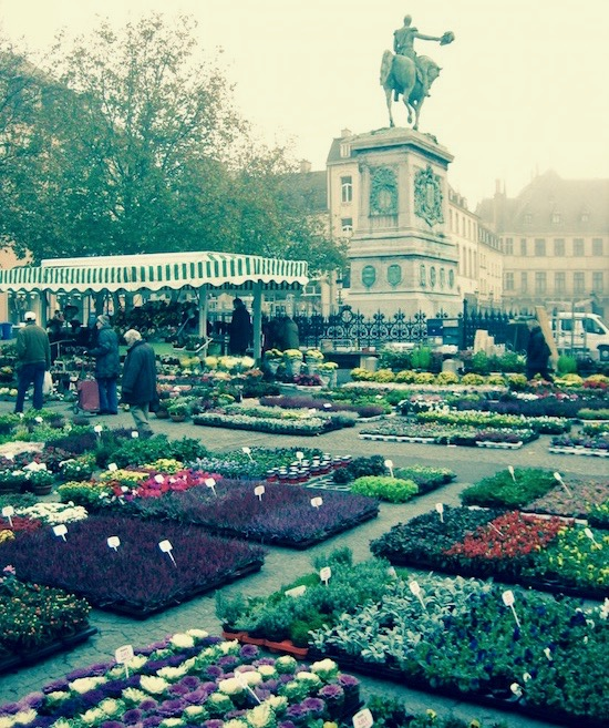 Luxembourg City Flower Market.