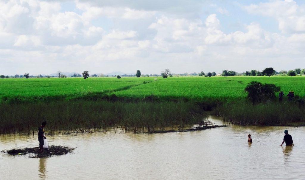 Rural Battambang Cambodia.