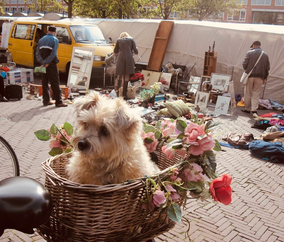 Waterlooplein Flea Market Amsterdam.