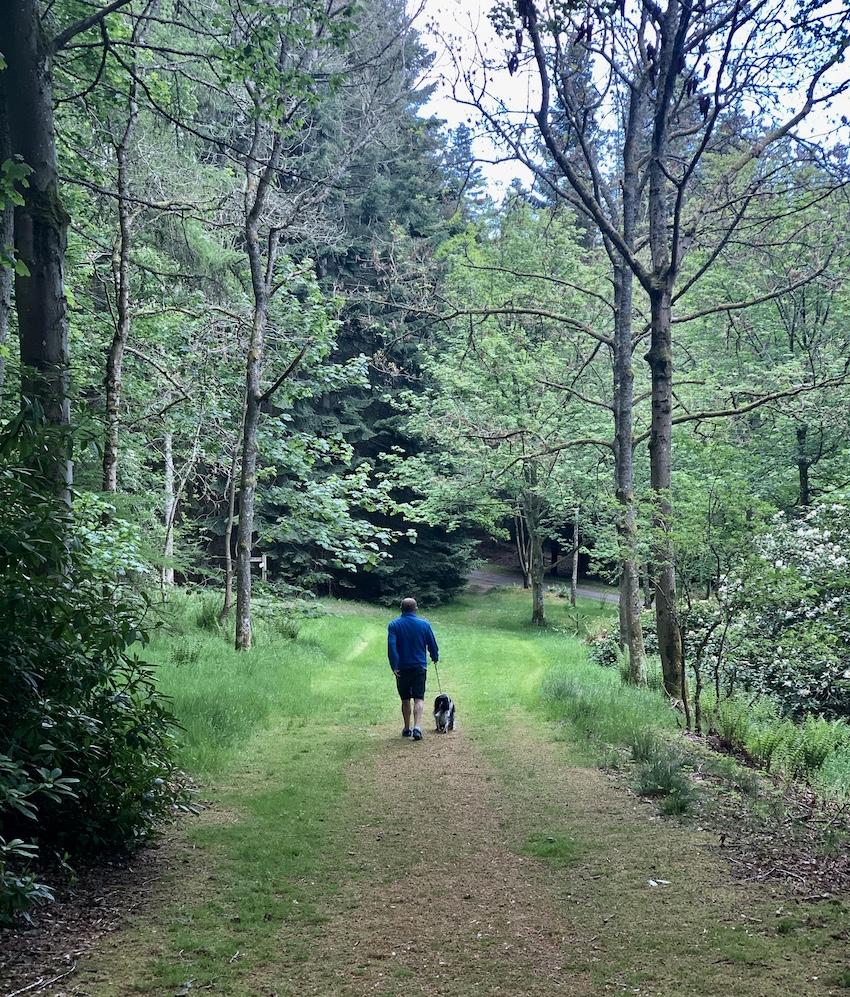 Dog walking Torwoodlee Circular Scotland.