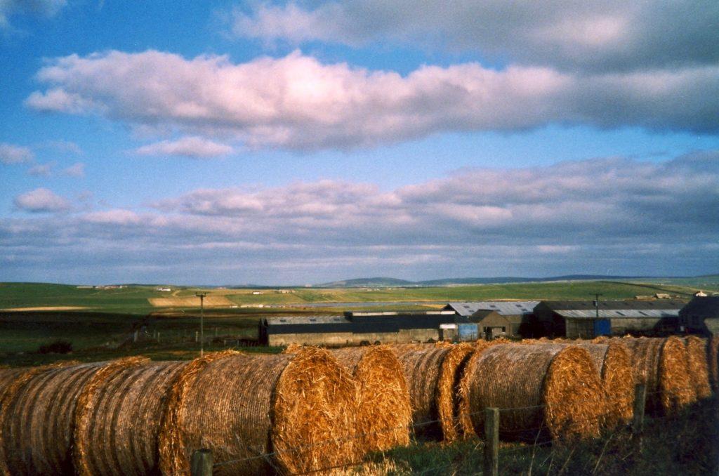 Farmland Orkney Scotland.