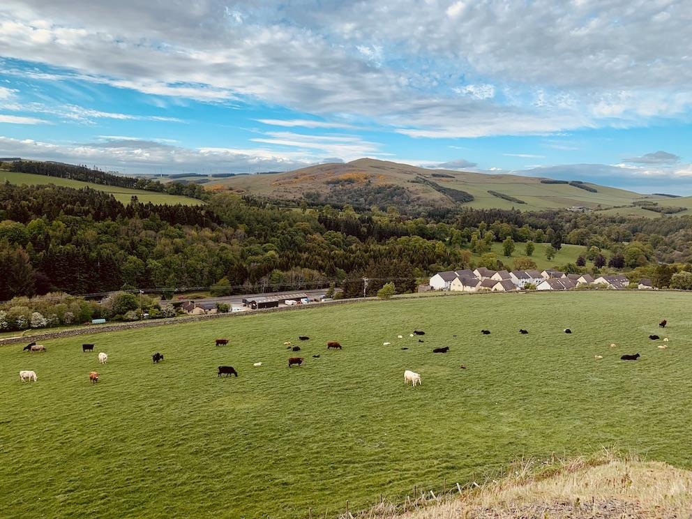 Hiking on The Meigle Circular Galashiels Scotland