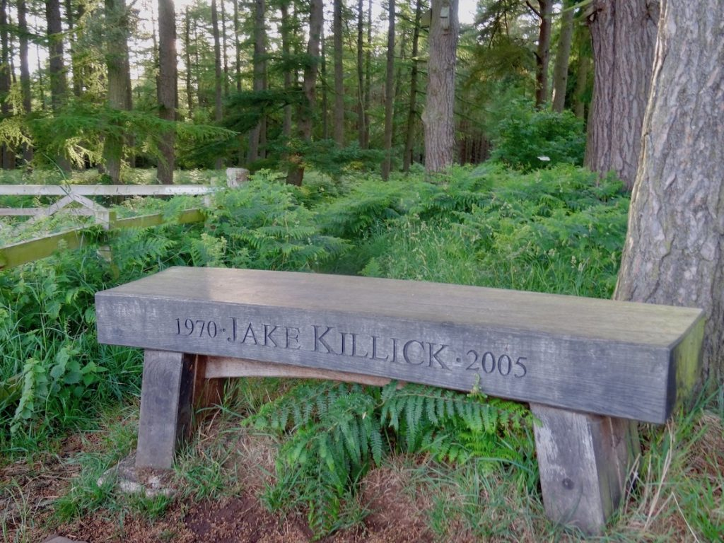 Jake Killick bench Bowmont Forest Scotland.
