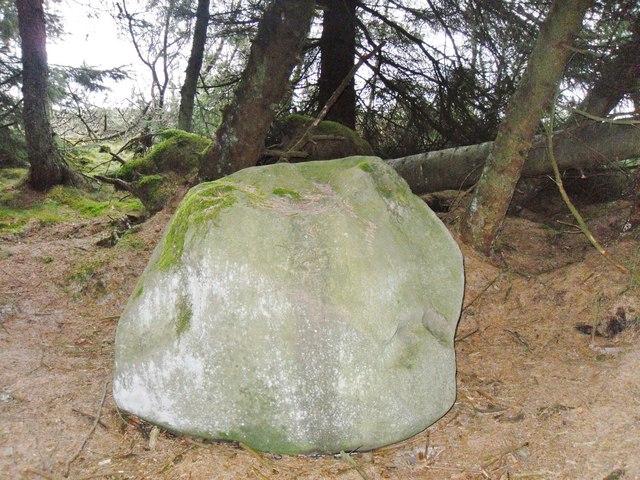 Wallace's Putting Stone Meigle Hill Scotland.