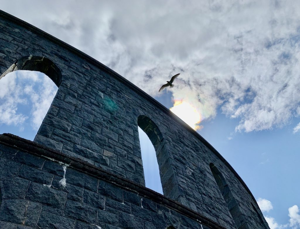A seagull flying over McCaig's Tower Oban.