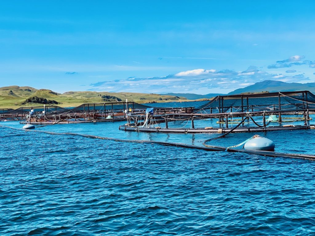 Salmon farm Oban Scotland.