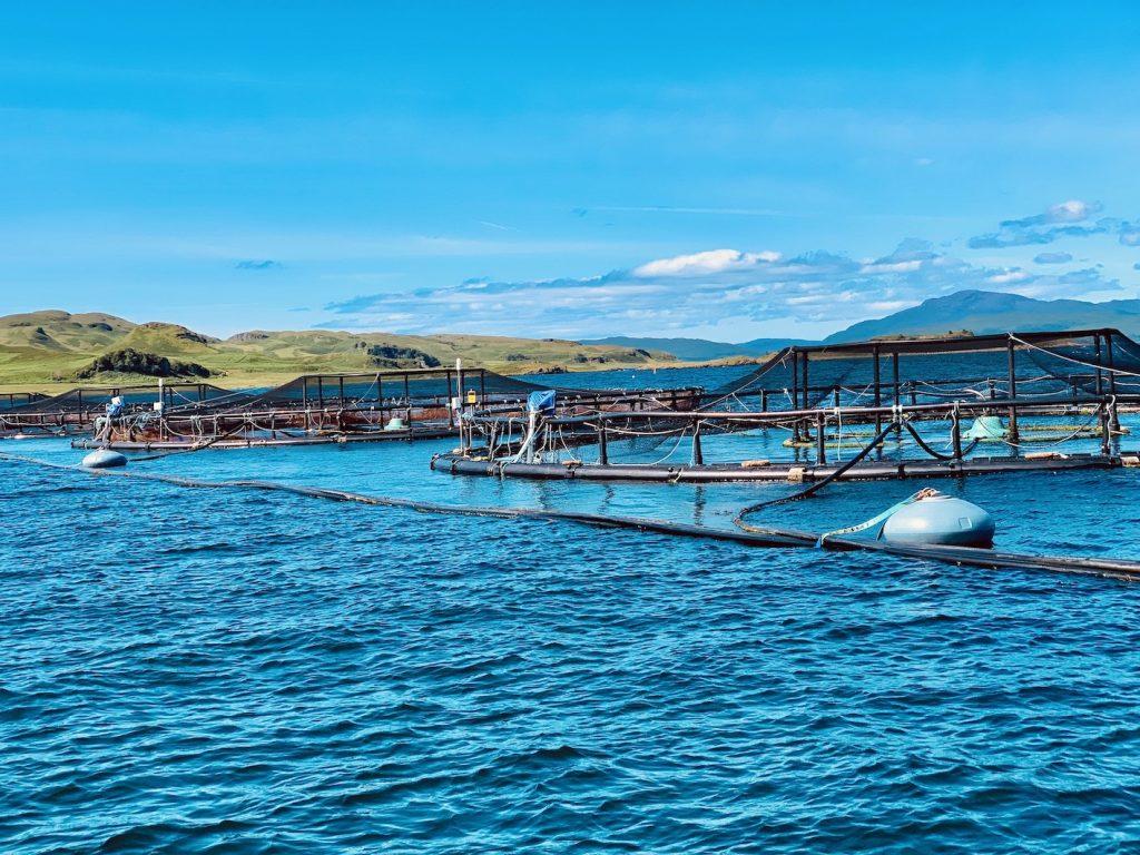 Salmon farm Oban Scotland.