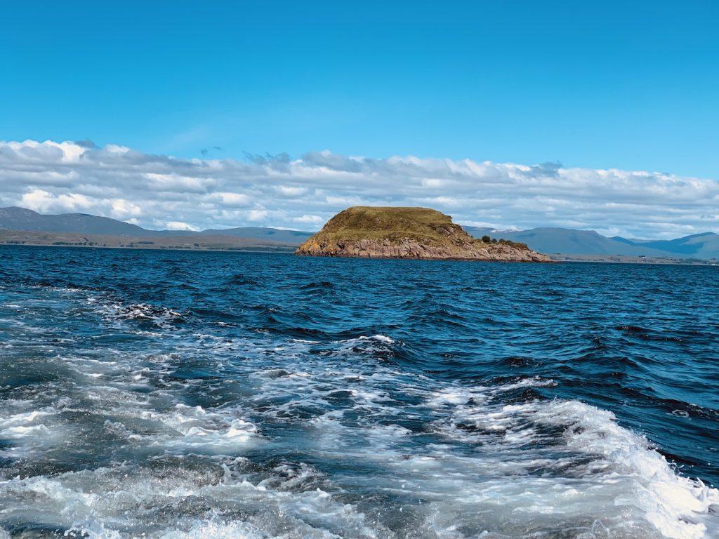 Seal Cruise Argyll Sea Tours Oban.