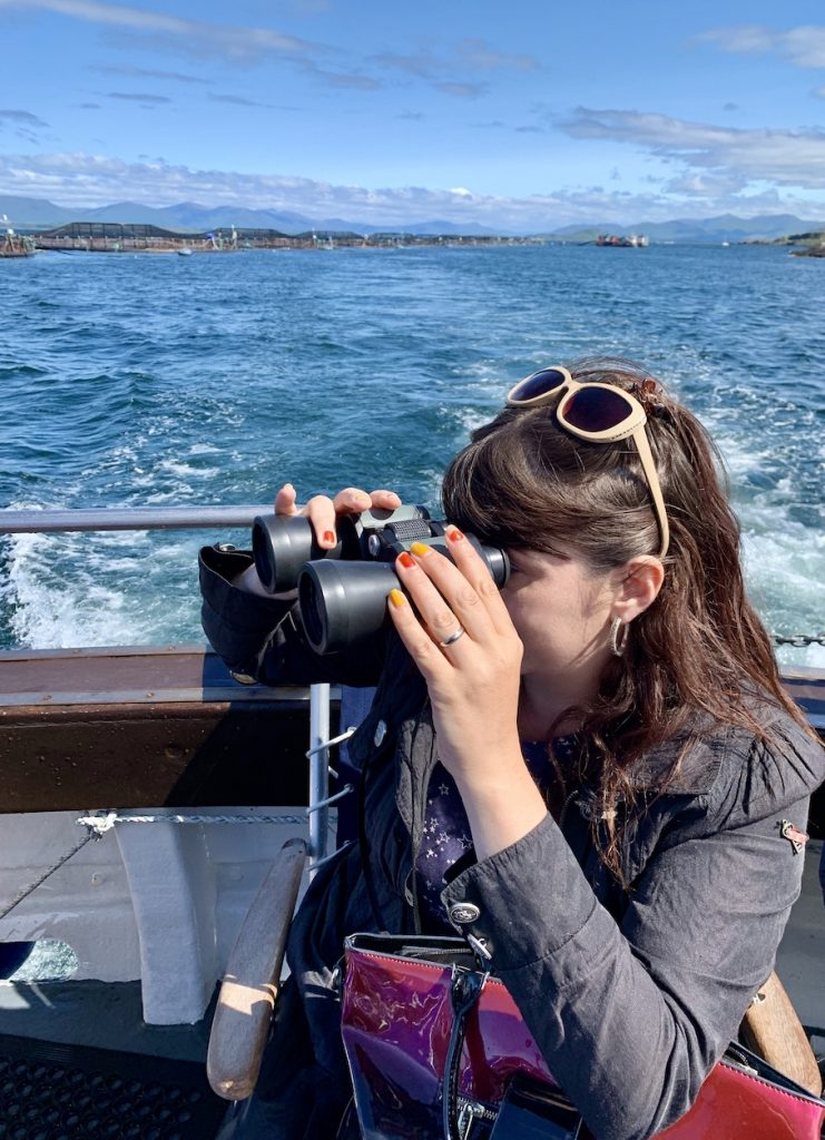 Seal watching Argyll Sea Tours Oban.