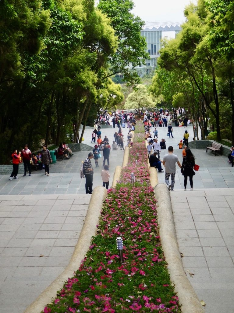 Visit Shenzhen International Garden and Flower Expo Park