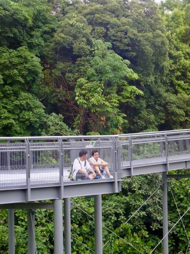 Hiking The Southern Ridges Singapore.