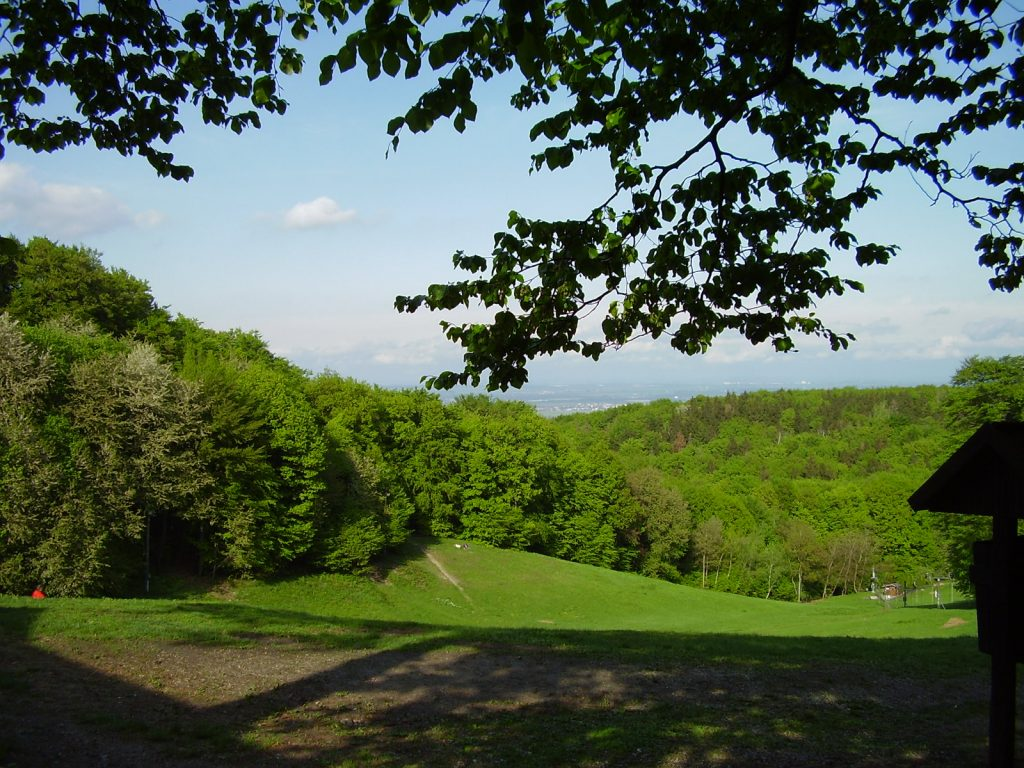 Koliba Park Bratislava Forest Park