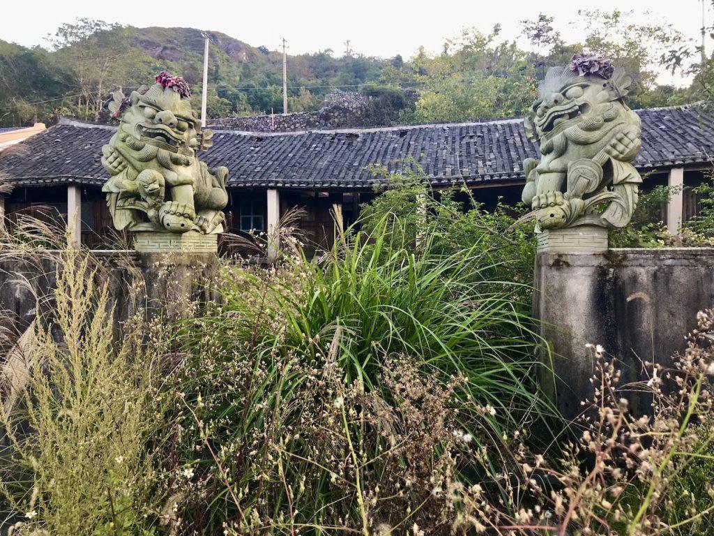 Overgrown garden Cangnan County China