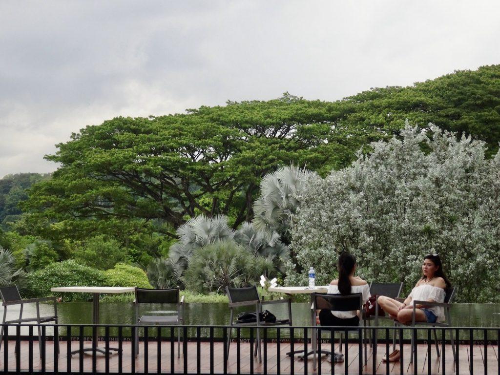 Terrace Cafe Hort Park Singapore.