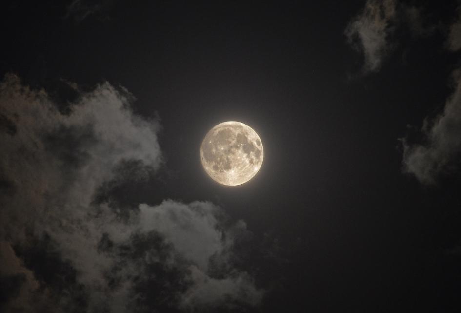 Bad Moon Rising a short story from China.