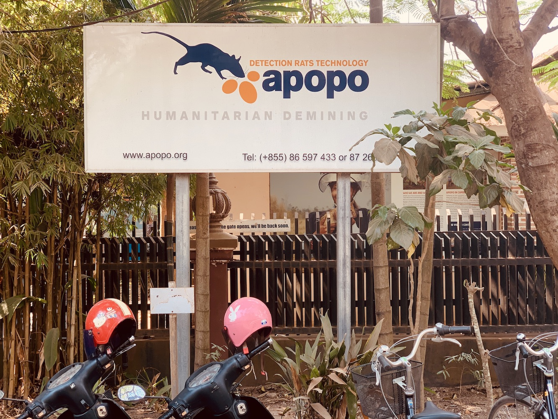 APOPO Rats Humanitarian Demining.