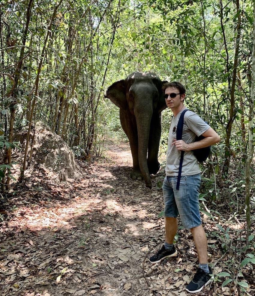 Kulen Elephant Sanctuary Cambodia.