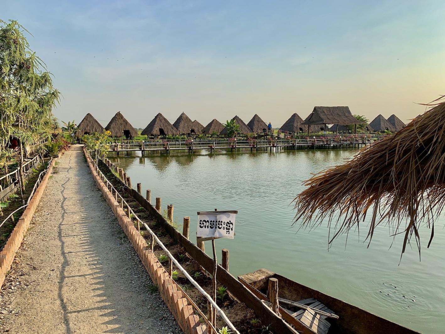 Lotus Farm Siem Reap.