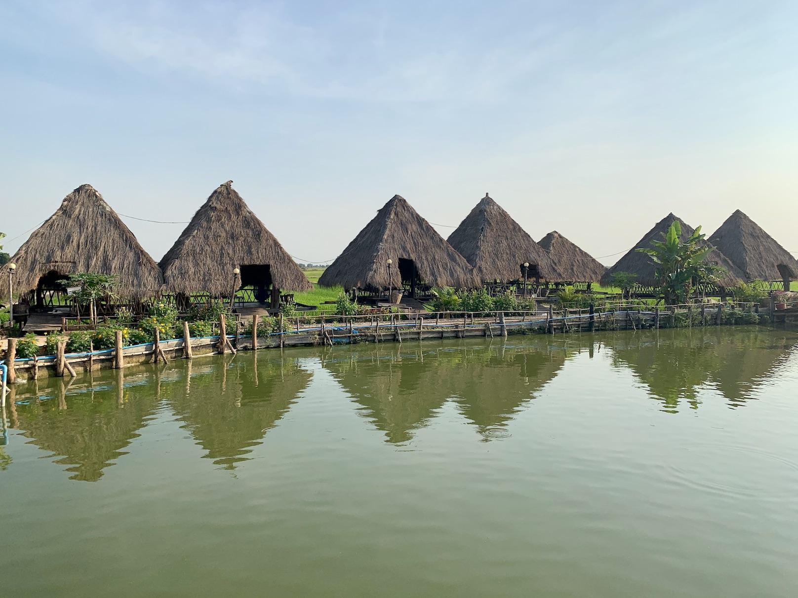 Visit the Lotus Farms Siem Reap.