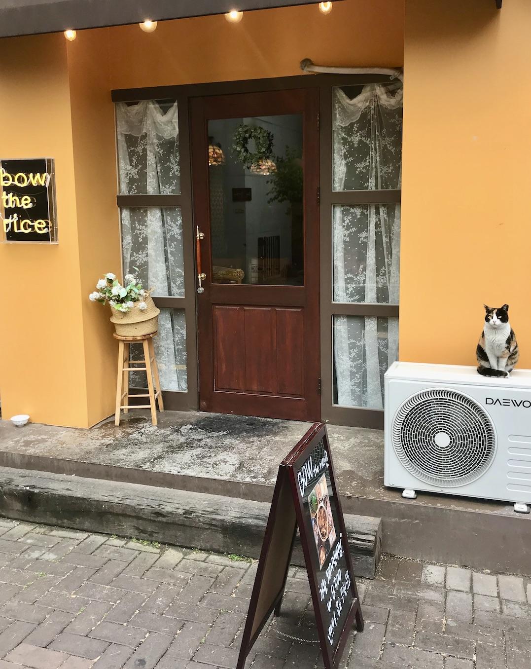 Bow the Rice Restaurant Daegu.