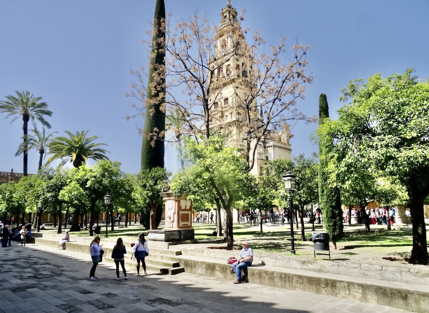 Courtyard of the Orange Trees Cordoba Spain.