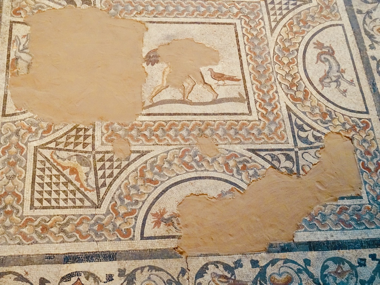 The Middleborough Mosaic Colchester.