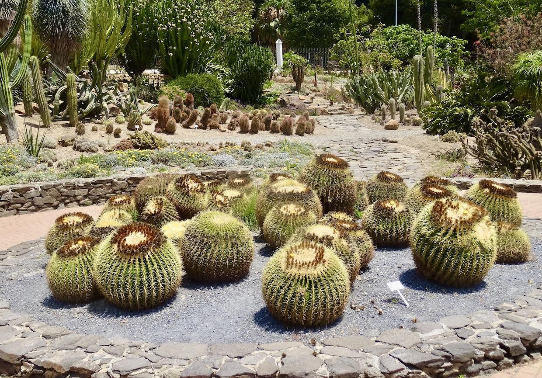 Cactus Garden Paloma Park Benalmadena.