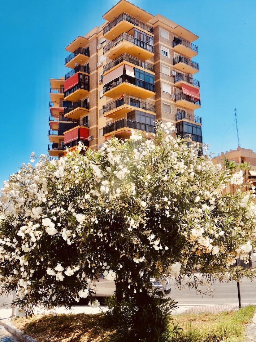 Colourful apartment block Torremolinos.