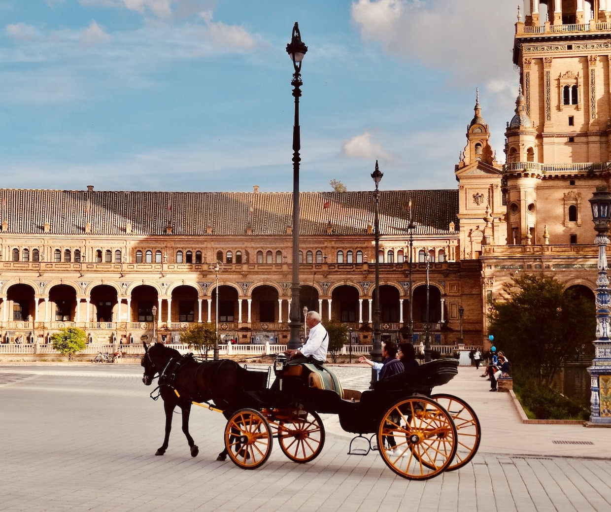 Horse and carriage Plaza de Espana.