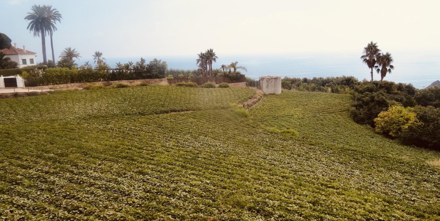Maro village Andalusia.