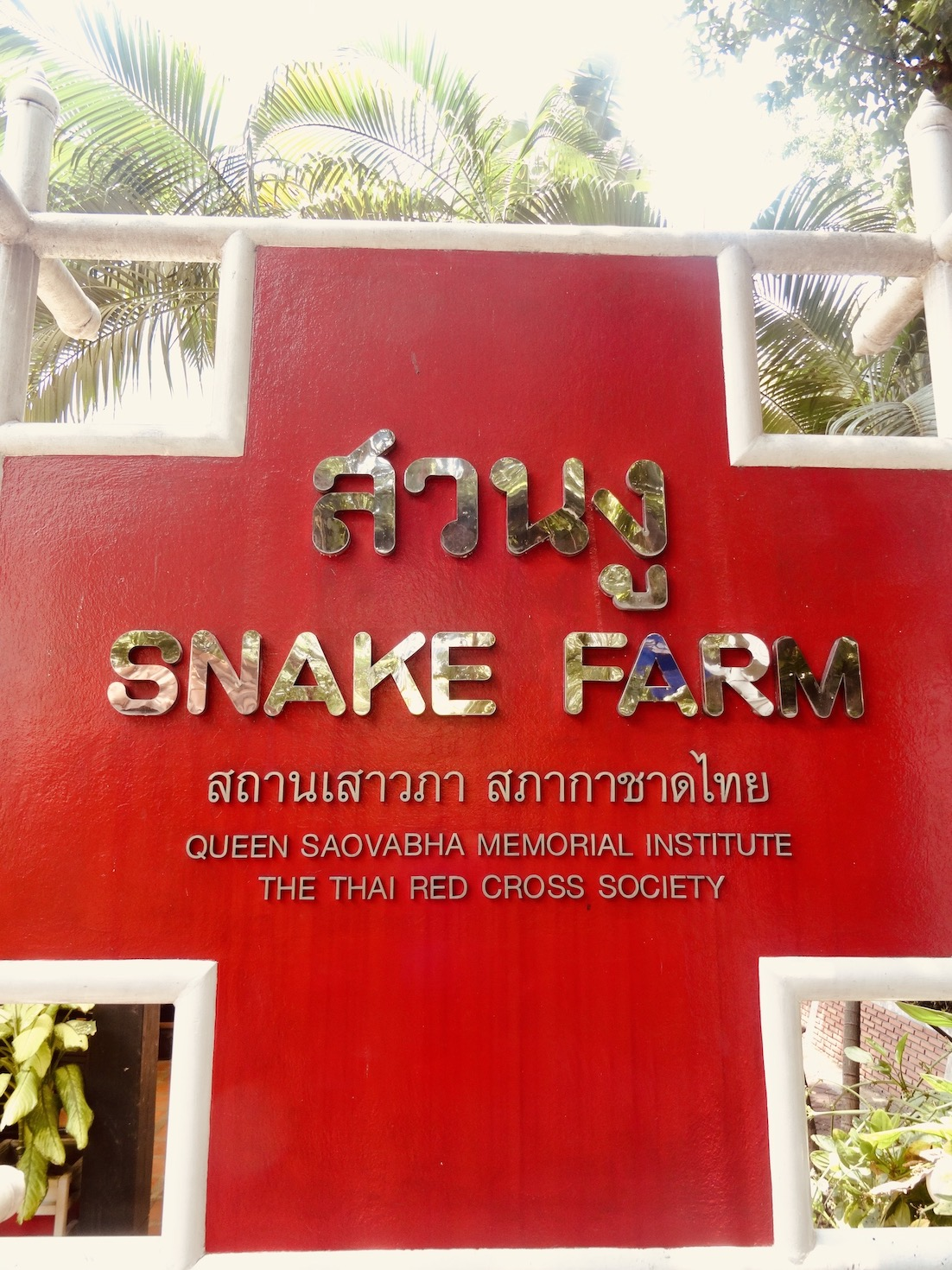 Bangkok Snake Farm.
