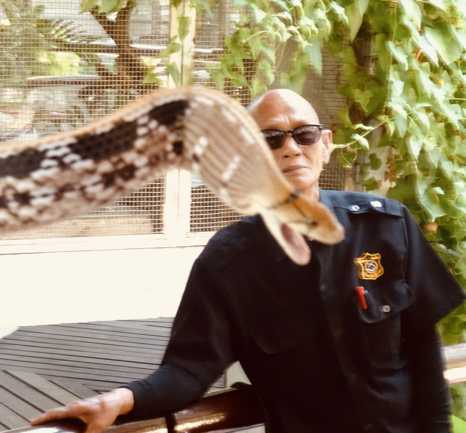 Bangkok Snake Farm Queen Saovabha Memorial Institute