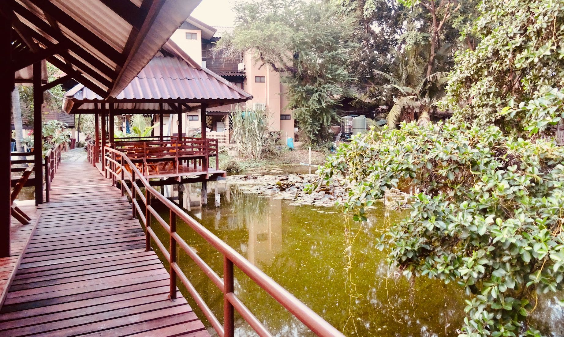 Baan Lotus Guest House Ayutthaya Thailand