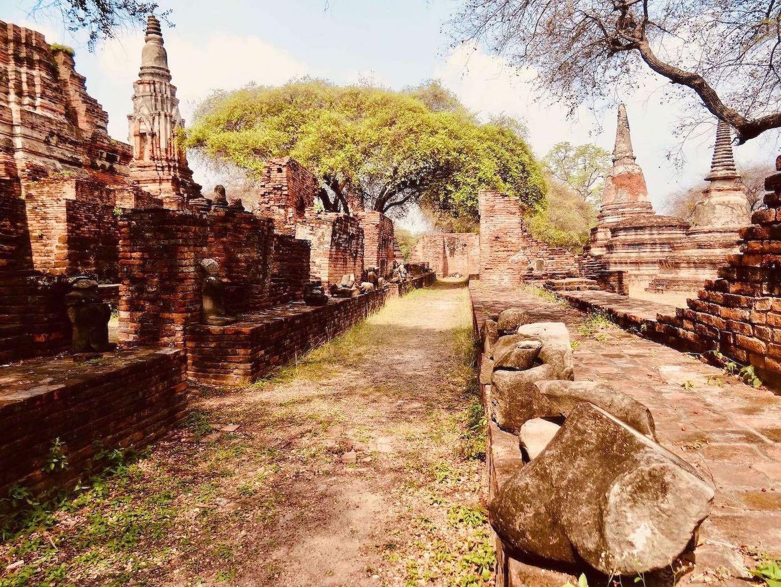 Exploring Wat Phra Ram.