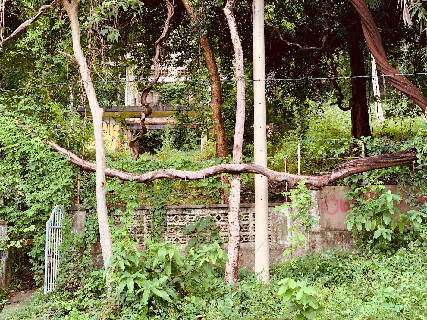 King's Villa Kep Cambodia.