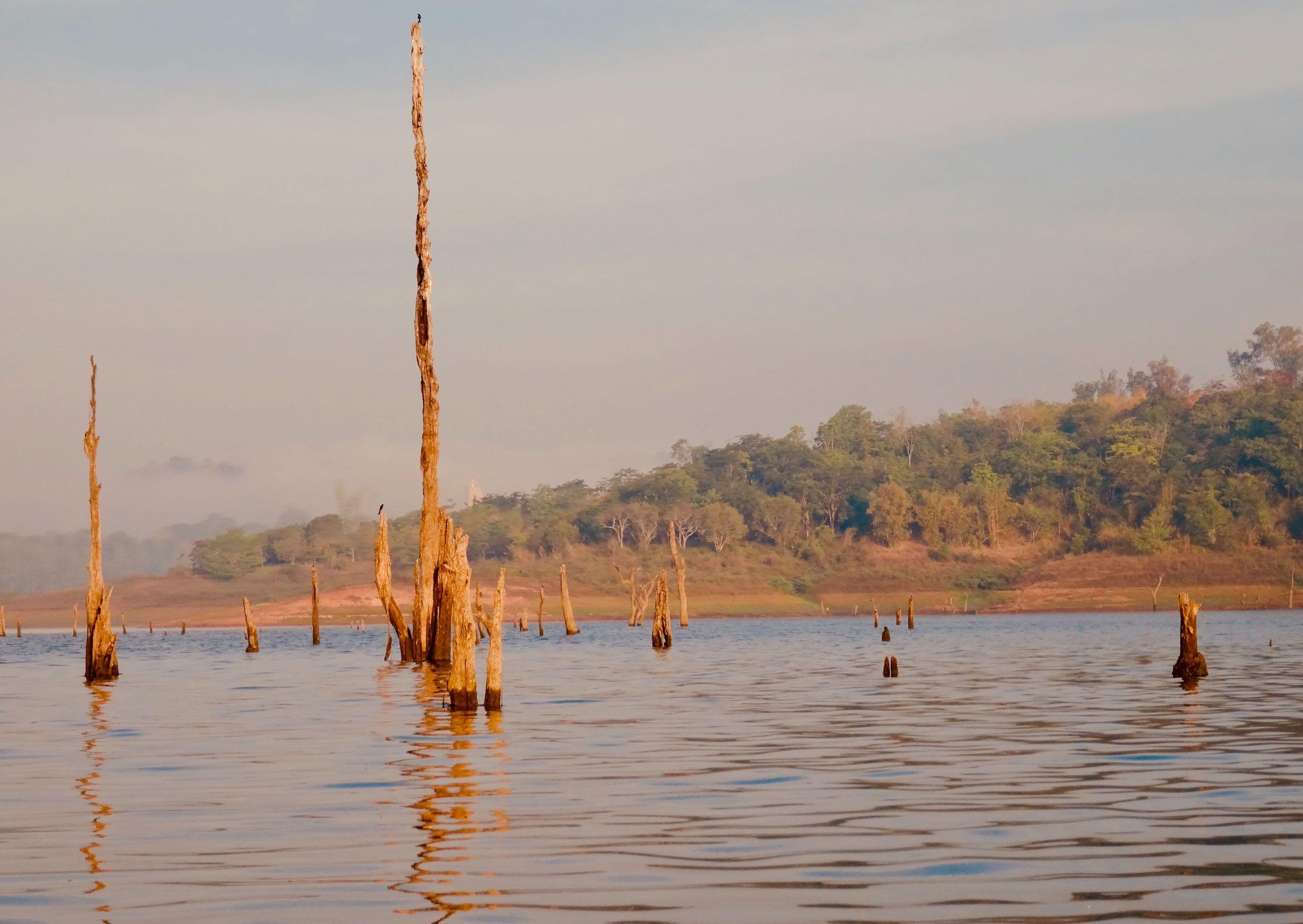 Morning cruise Khao Laem Reservoir.