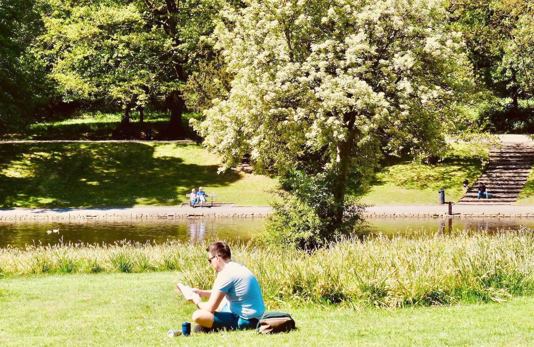 Man reading in Liverpool's Sefton Park