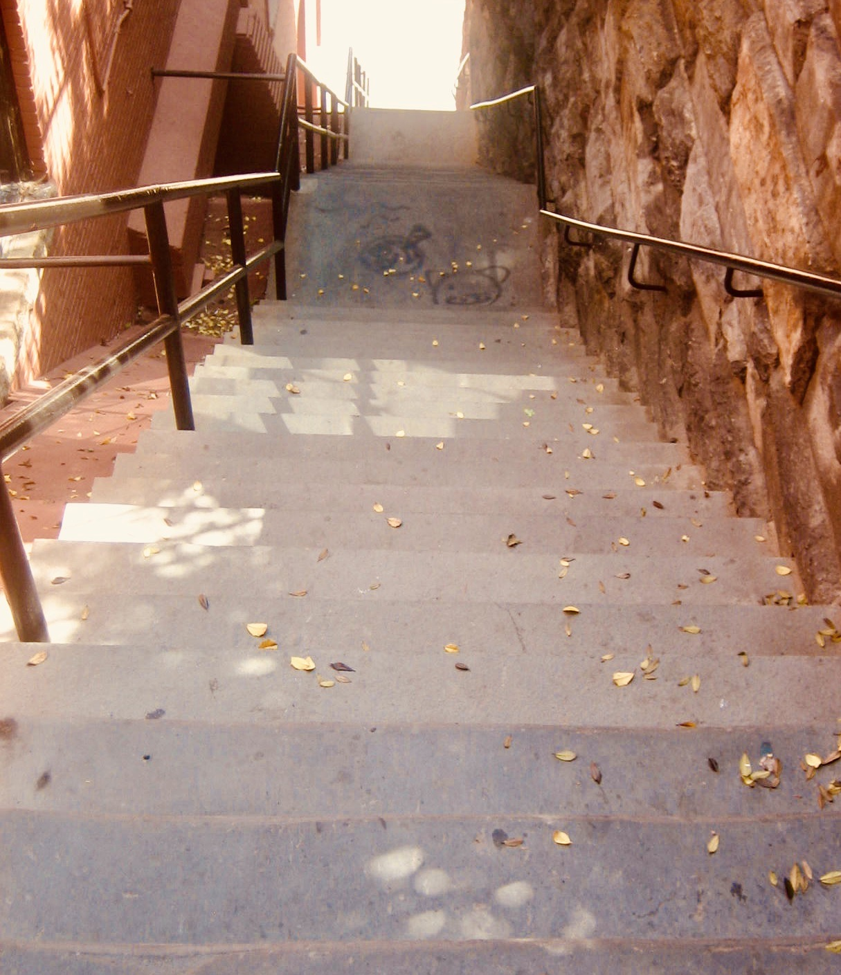 The Exorcist Steps Leading from Prospect Street to M Street