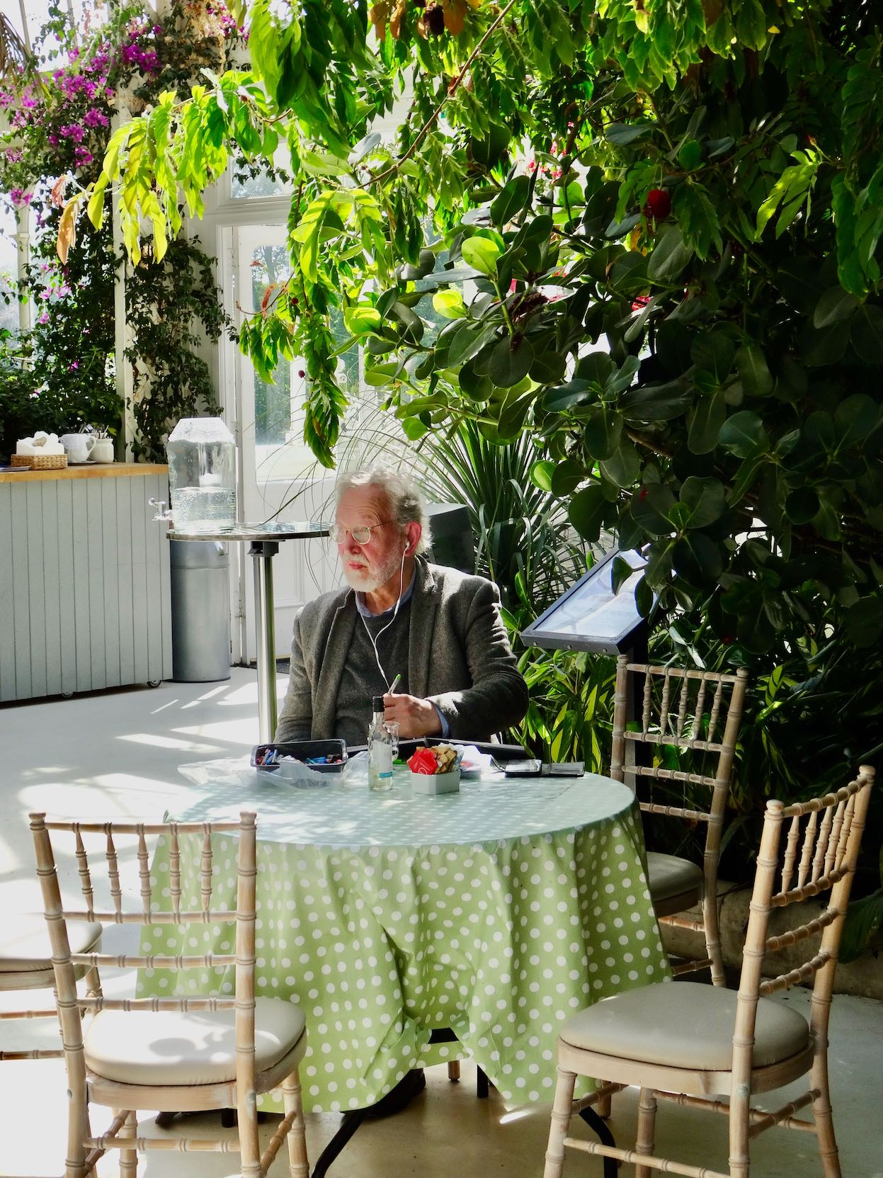 The cafe at Palm House Sefton Park Liverpool