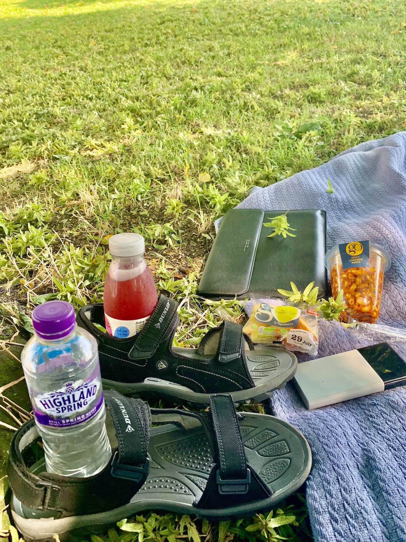 A picnic on Tooting Bec Common.