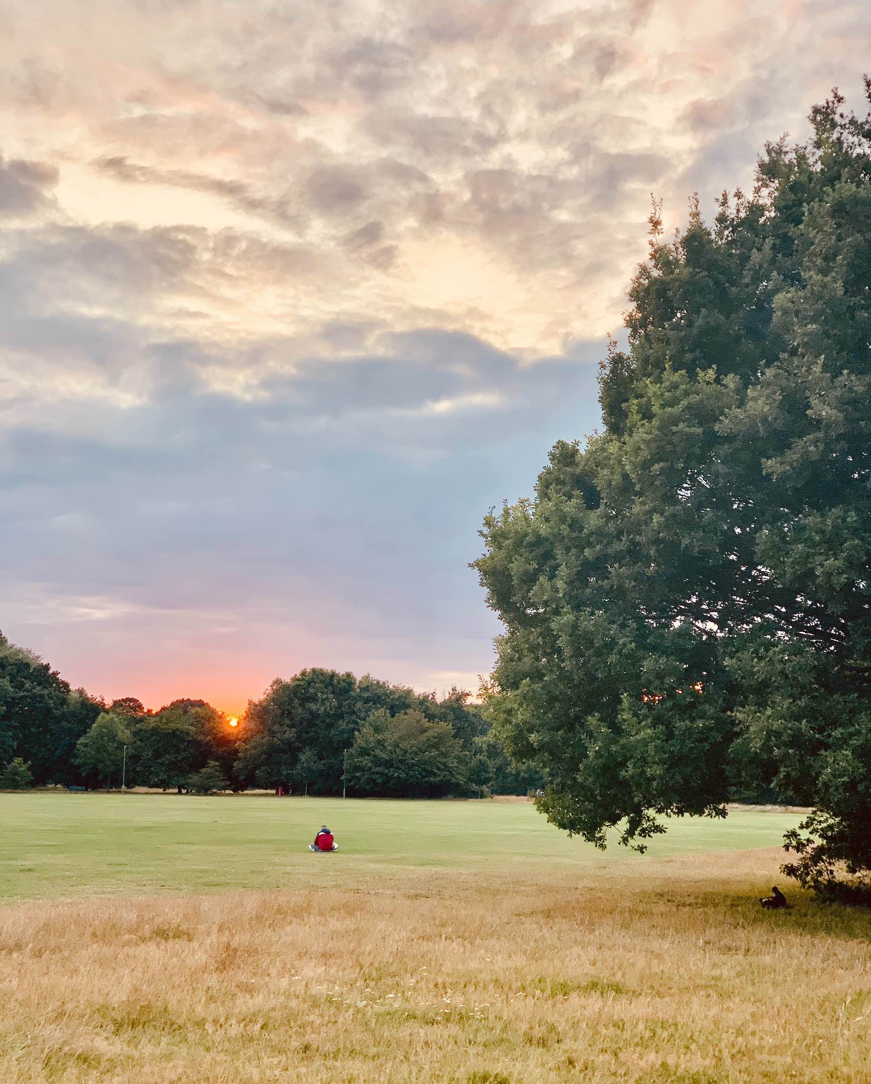 Sunset over Tooting Bec Common